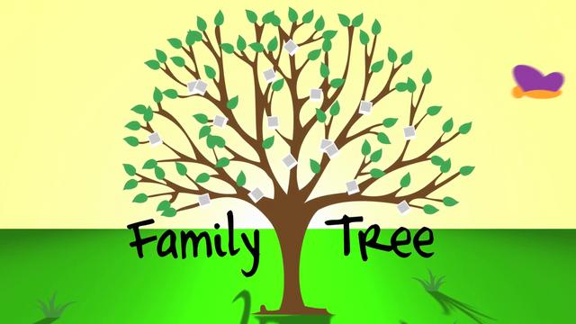 3 Situations When a Family Tree is Important - North Phoenix ...